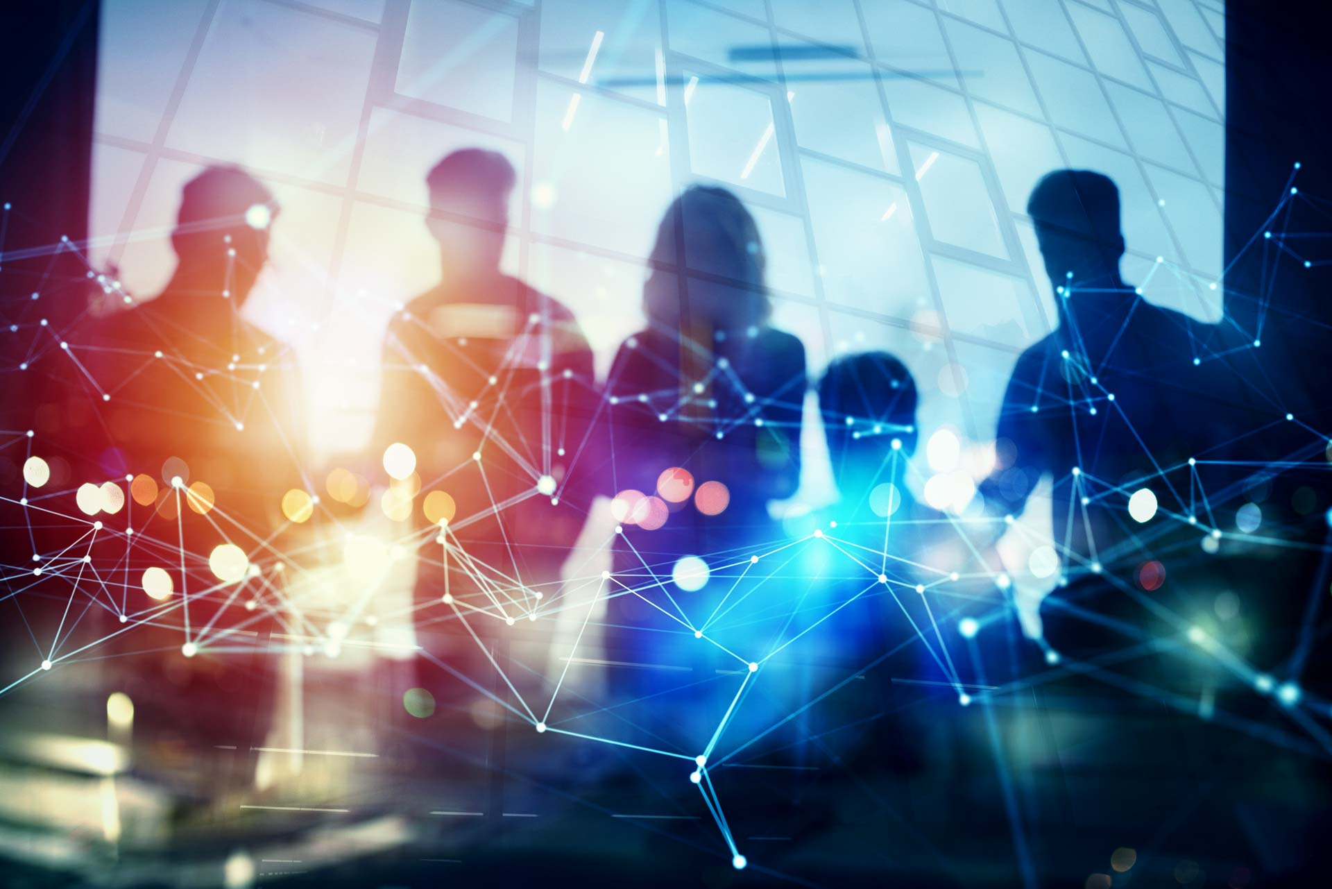 teamwork-network